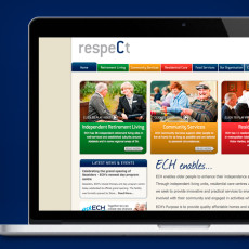 NrG Advertising Website Development for ECH Inc