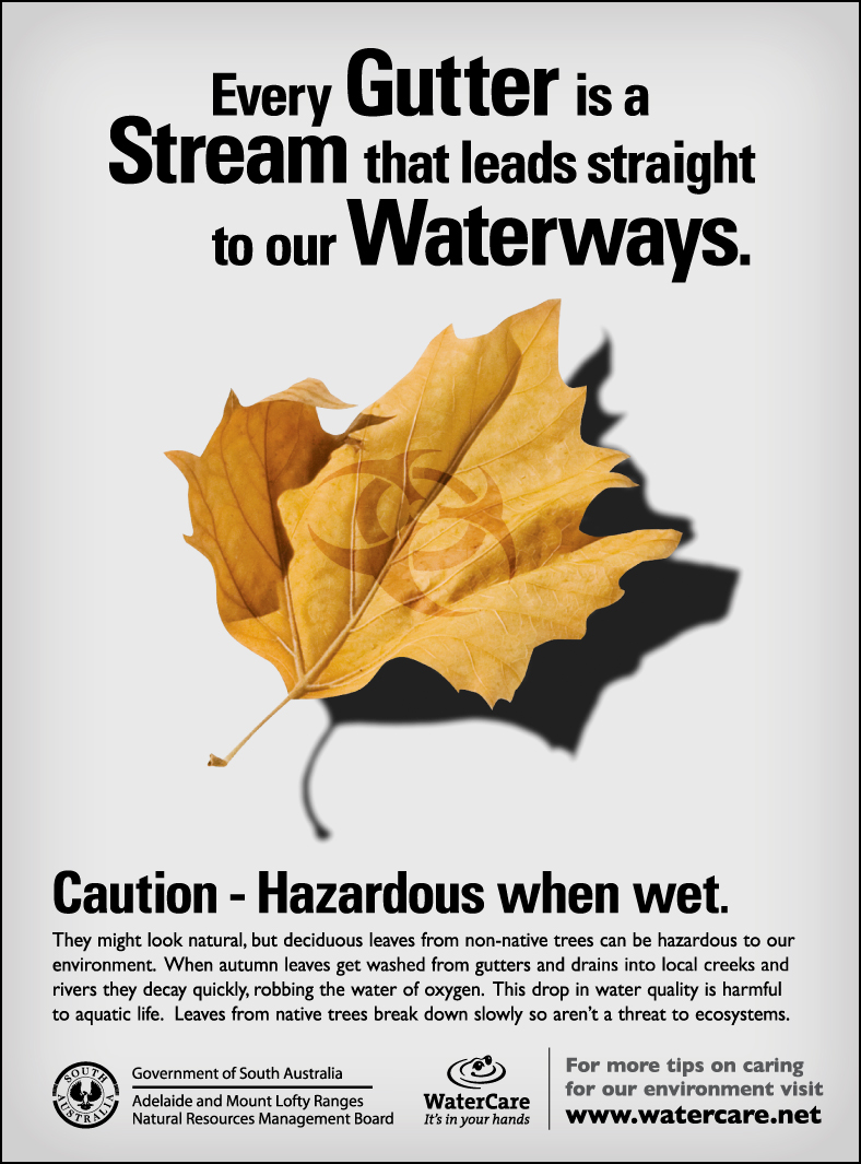 NrG Advertising - NRM Hazardous Leaves Advertising Campaign