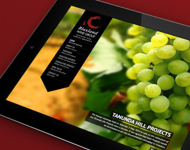 NRG-Advertising-Blaxland-Wine-Group-Website-thumb