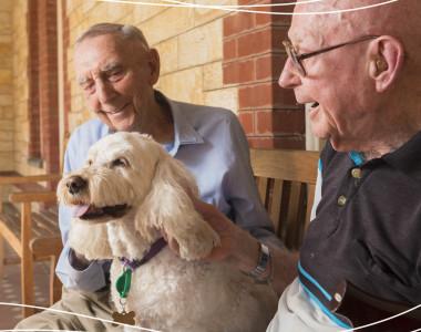 NRG Advertising - Eldercare Corporate Rebranding